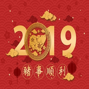 CHINESE NEW YEAR HOLIDAY NOTICE 2019